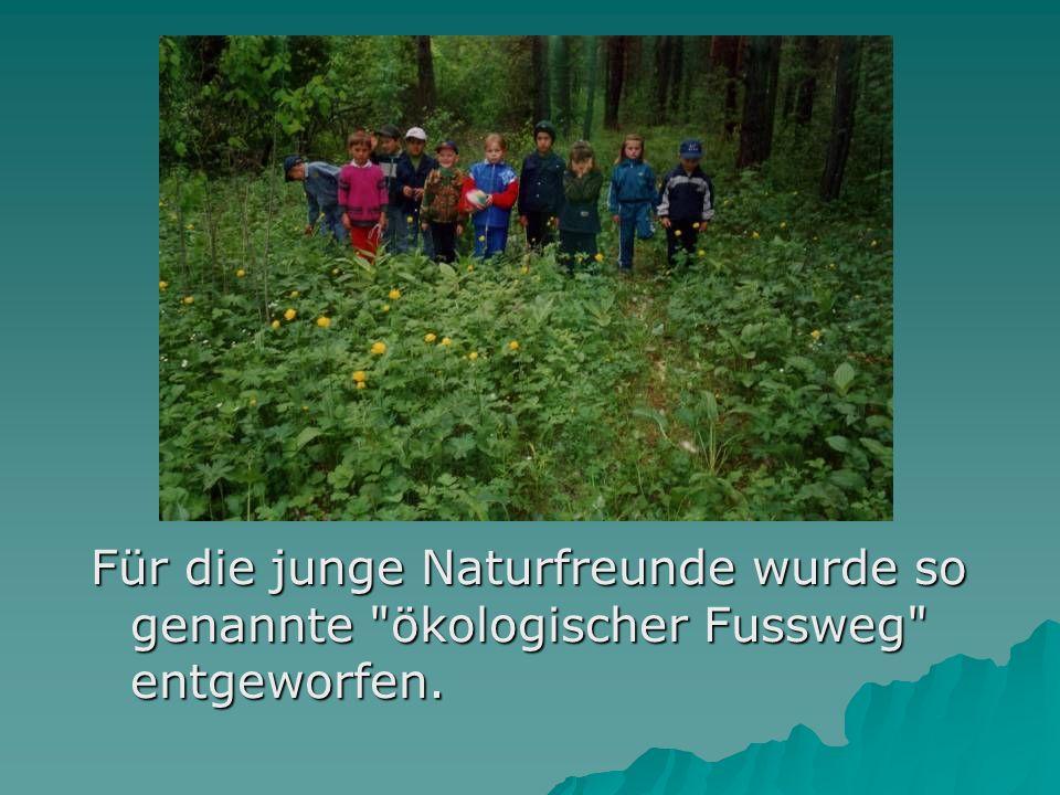 Für die junge Naturfreunde wurde so genannte ökologischer Fussweg entgeworfen.