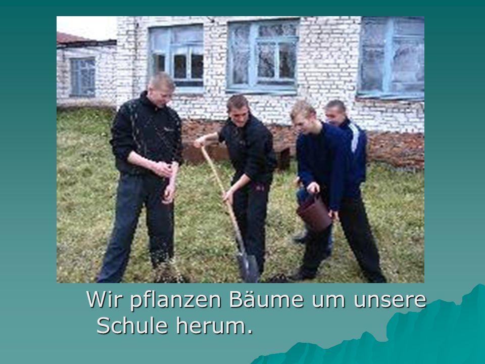 Wir pflanzen Bäume um unsere Schule herum.