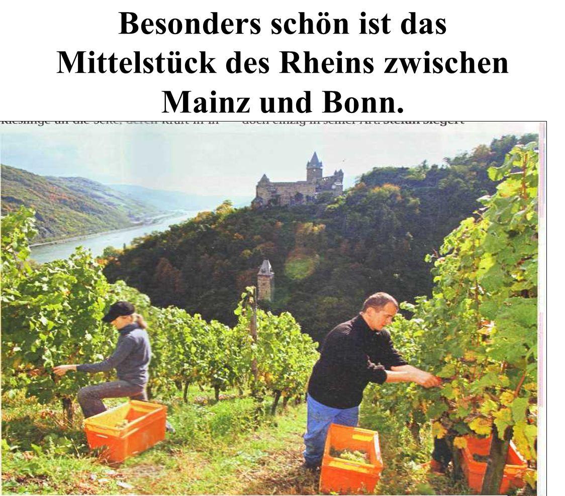 Besonders schön ist das Mittelstück des Rheins zwischen Mainz und Bonn.