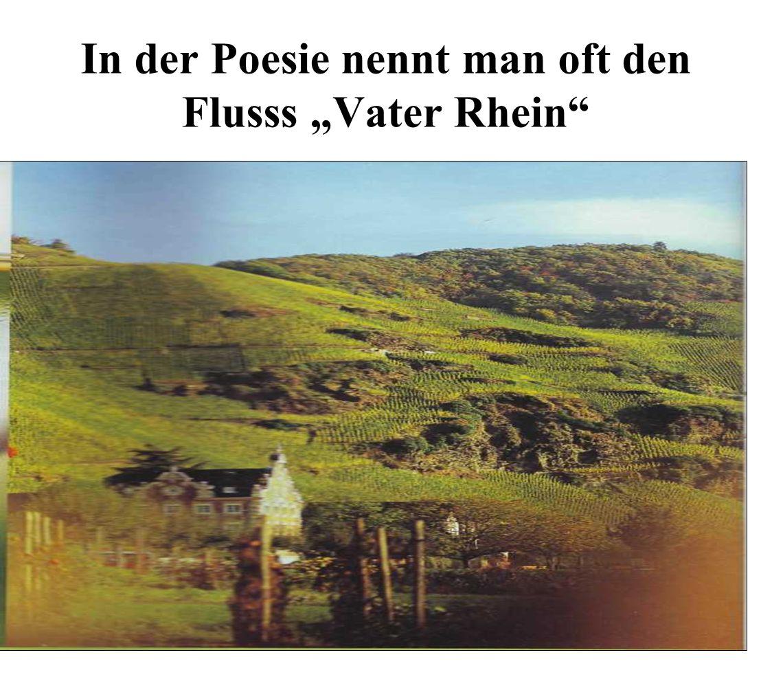 """In der Poesie nennt man oft den Flusss """"Vater Rhein"""