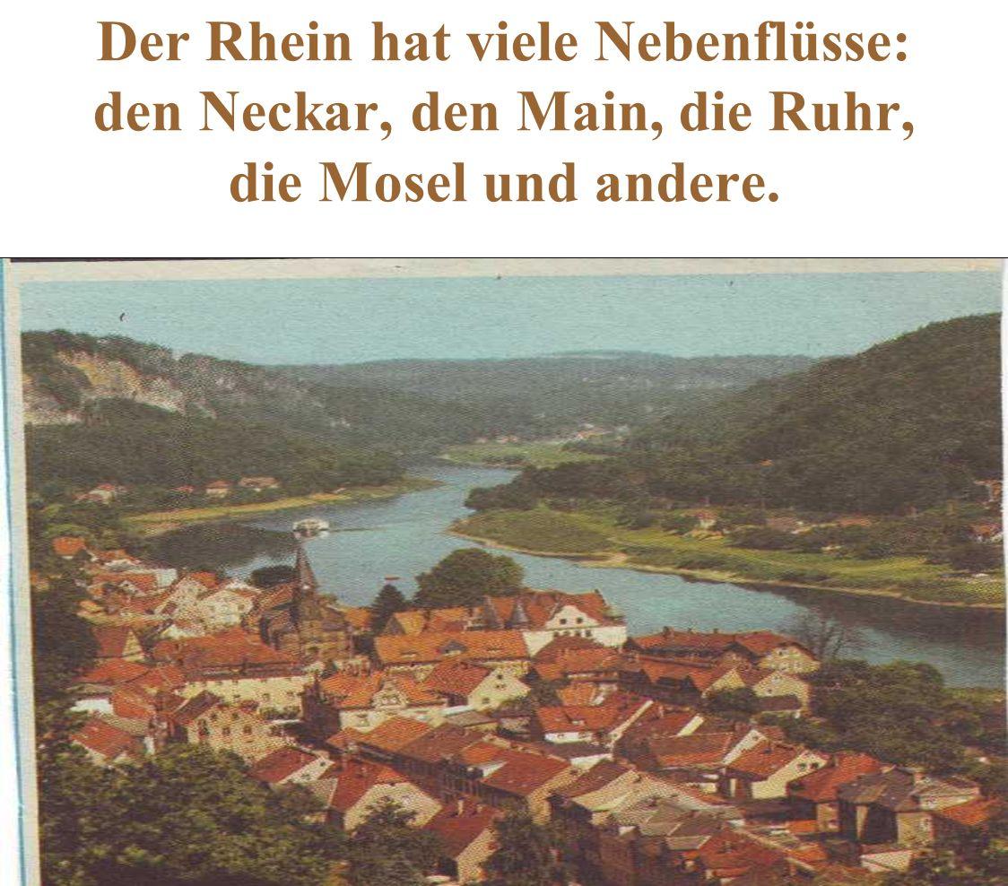 Der Rhein hat viele Nebenflüsse: den Neckar, den Main, die Ruhr, die Mosel und andere.