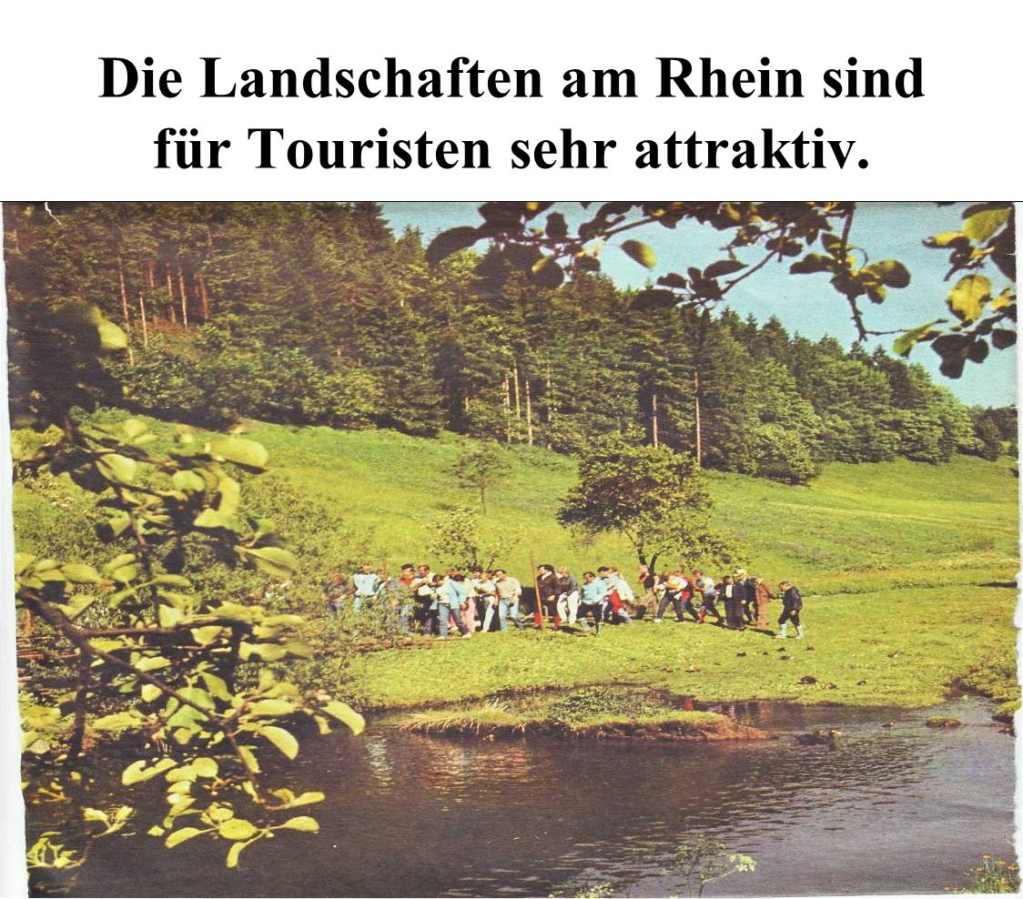 Die Landschaften am Rhein sind für Touristen sehr attraktiv.