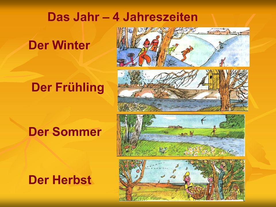 Das Jahr – 4 Jahreszeiten