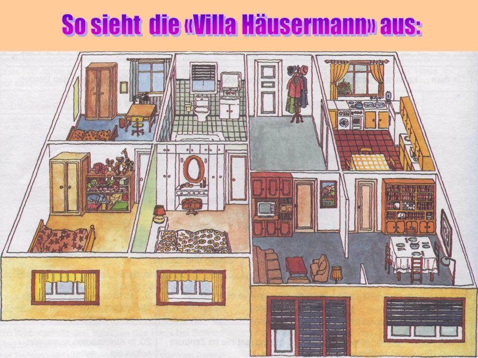 So sieht die «Villa Häusermann» aus: