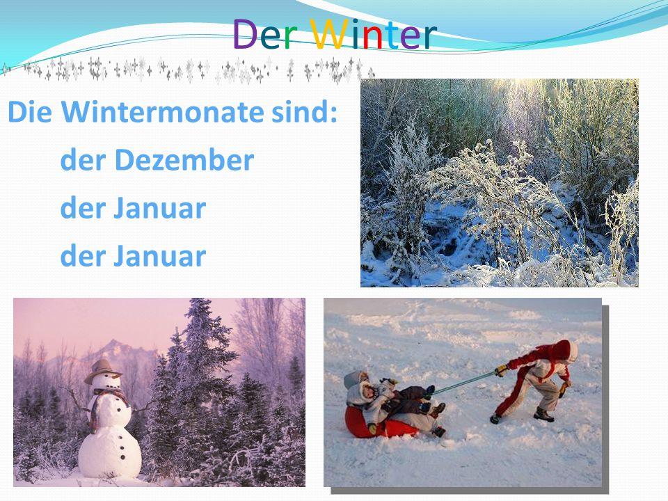 Der Winter Die Wintermonate sind: der Dezember der Januar