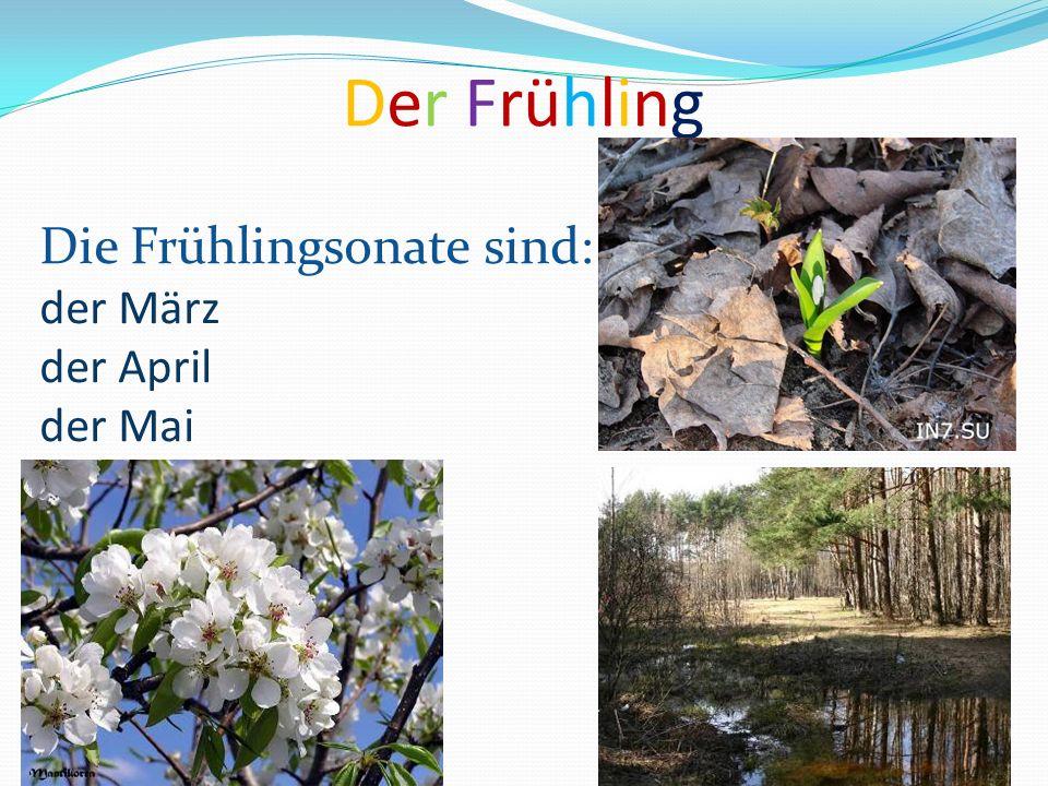 Der Frühling Die Frühlingsonate sind: der März der April der Mai
