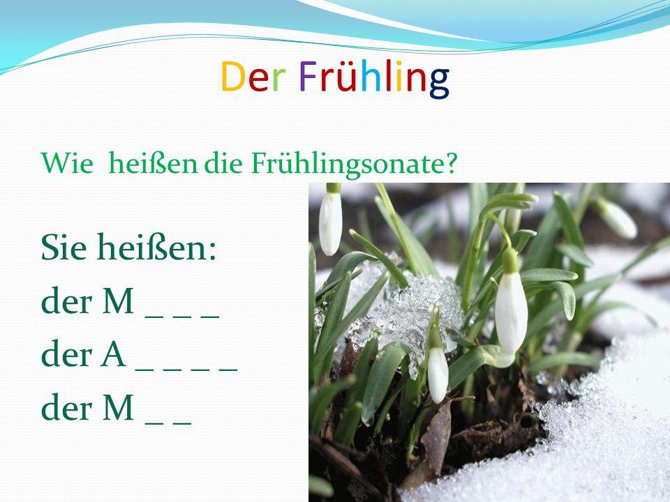Der Frühling Sie heißen: der M _ _ _ der A _ _ _ _ der M _ _