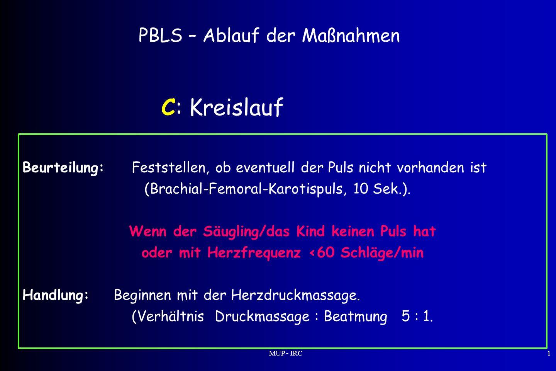 C: Kreislauf PBLS – Ablauf der Maßnahmen