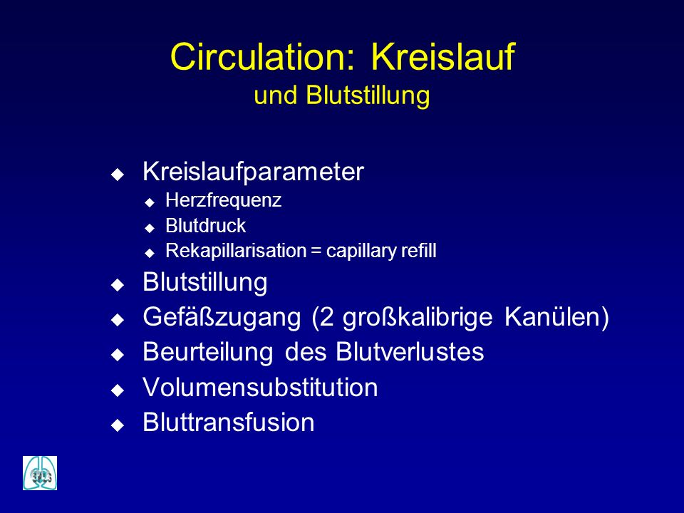 Circulation: Kreislauf und Blutstillung