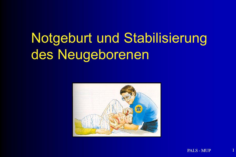 Notgeburt und Stabilisierung des Neugeborenen