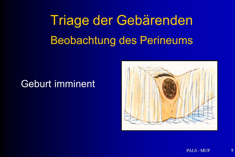 Triage der Gebärenden Beobachtung des Perineums