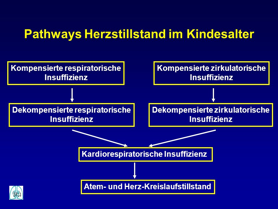 Pathways Herzstillstand im Kindesalter