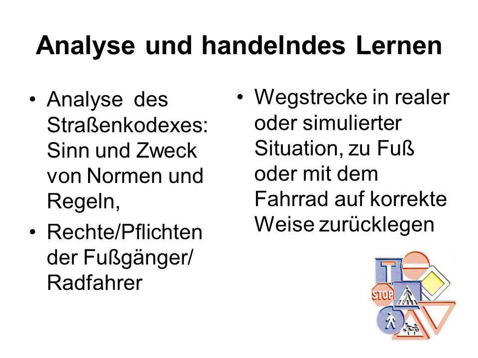 Analyse und handelndes Lernen