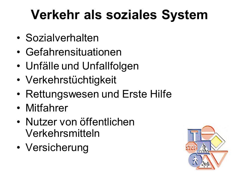 Verkehr als soziales System