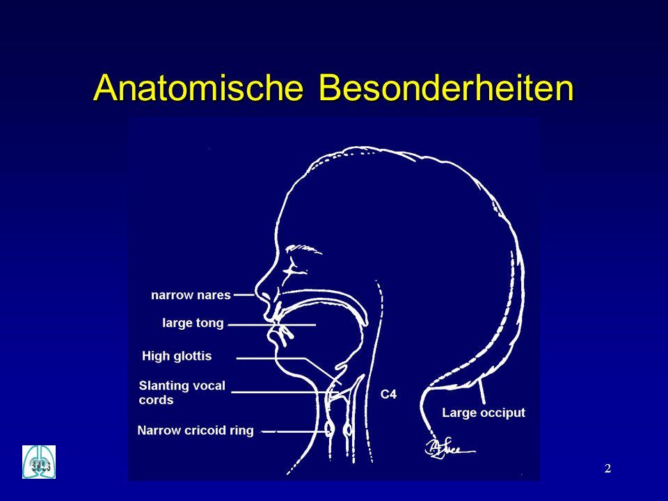 Anatomische Besonderheiten