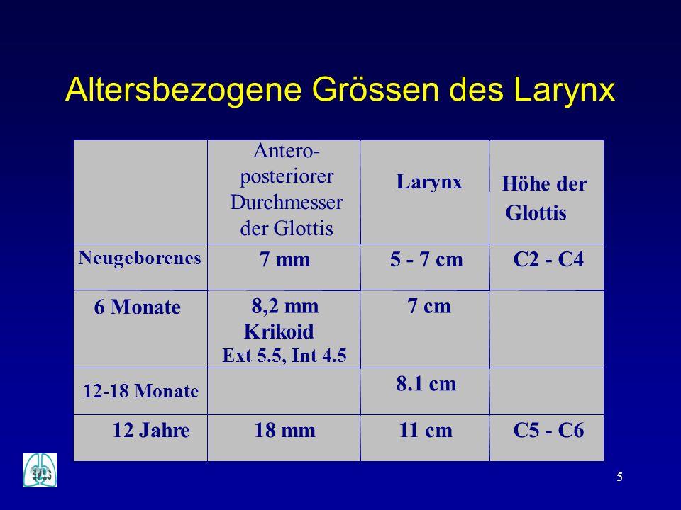 Altersbezogene Grössen des Larynx