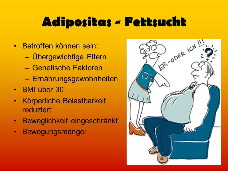 Adipositas - Fettsucht