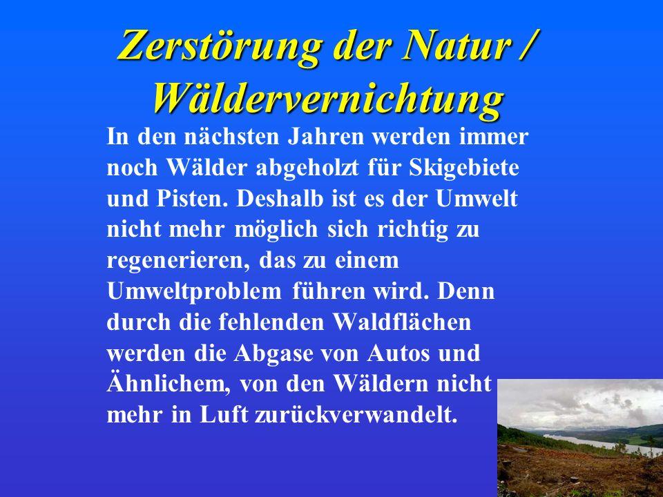 Zerstörung der Natur / Wäldervernichtung
