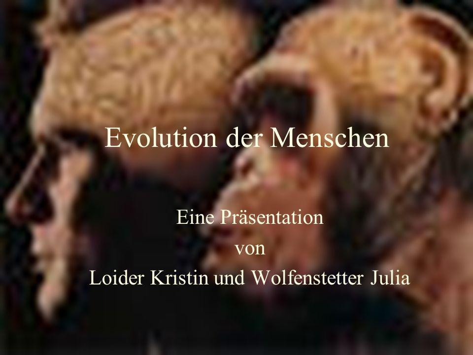 Evolution der Menschen