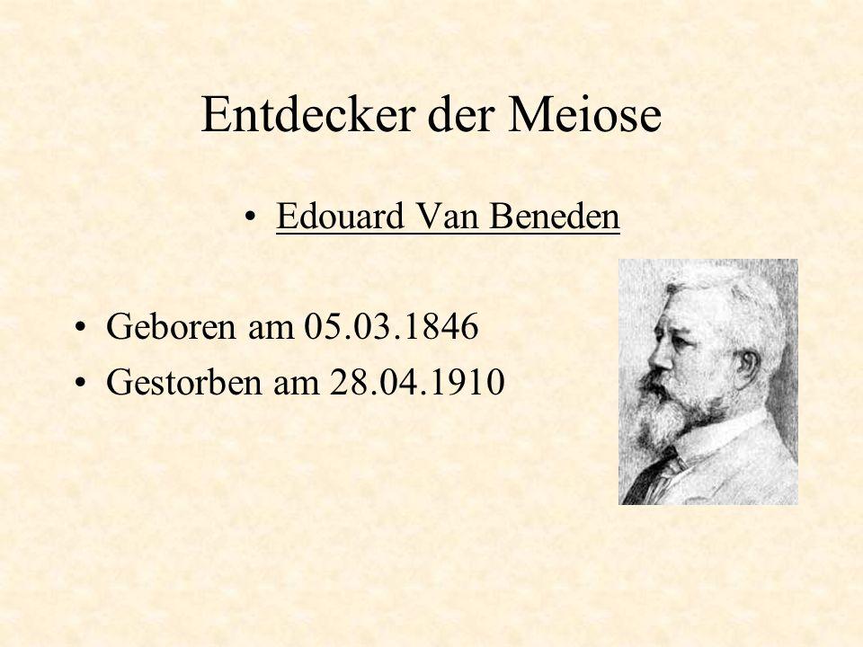 Entdecker der Meiose Edouard Van Beneden Geboren am 05.03.1846