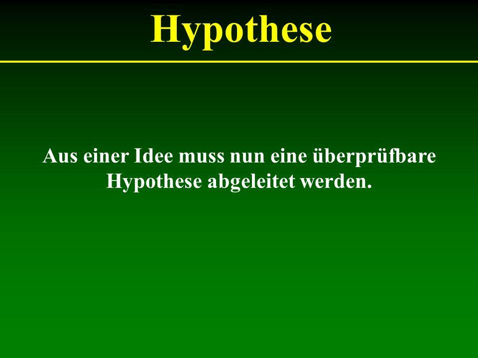 Aus einer Idee muss nun eine überprüfbare Hypothese abgeleitet werden.
