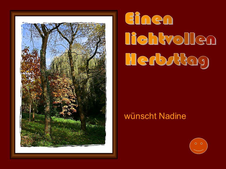 Einen lichtvollen Herbsttag wünscht Nadine
