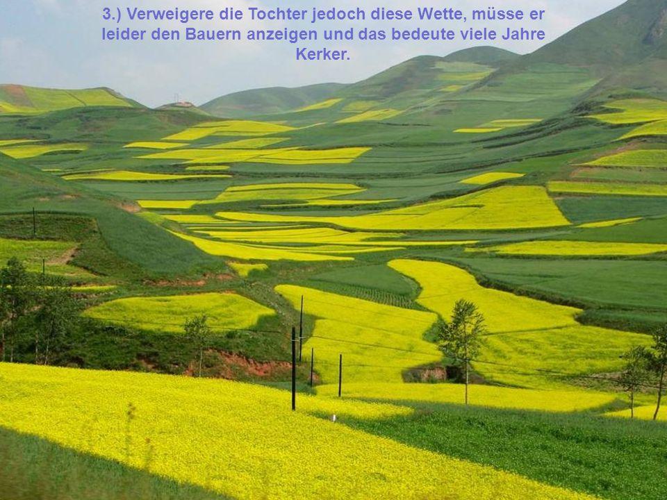 3.) Verweigere die Tochter jedoch diese Wette, müsse er leider den Bauern anzeigen und das bedeute viele Jahre Kerker.