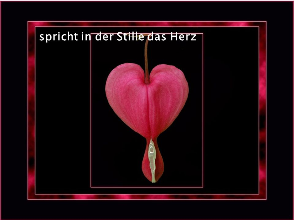 spricht in der Stille das Herz