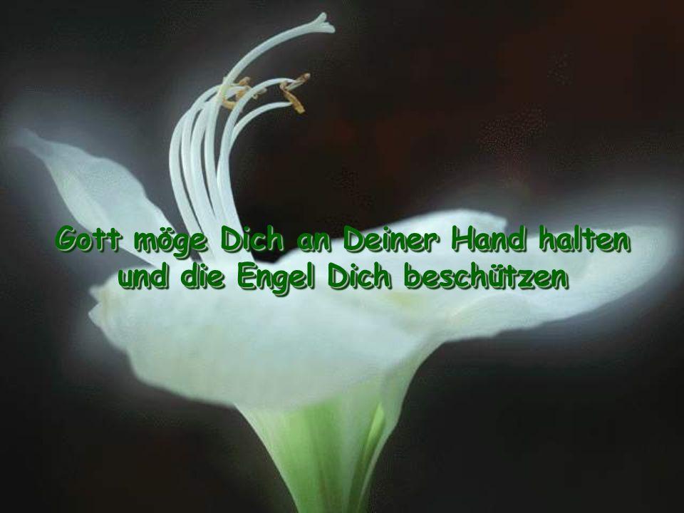 Gott möge Dich an Deiner Hand halten und die Engel Dich beschützen