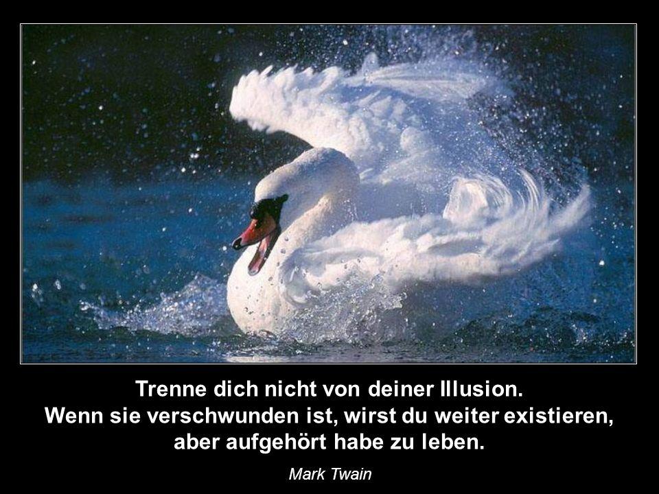 Trenne dich nicht von deiner Illusion