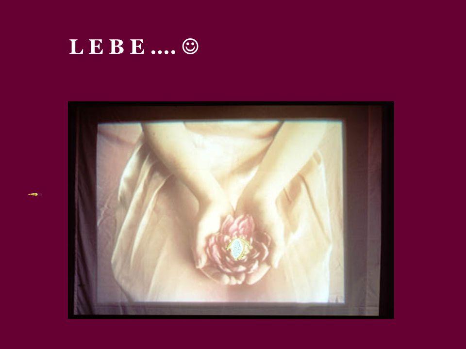 L E B E …. 