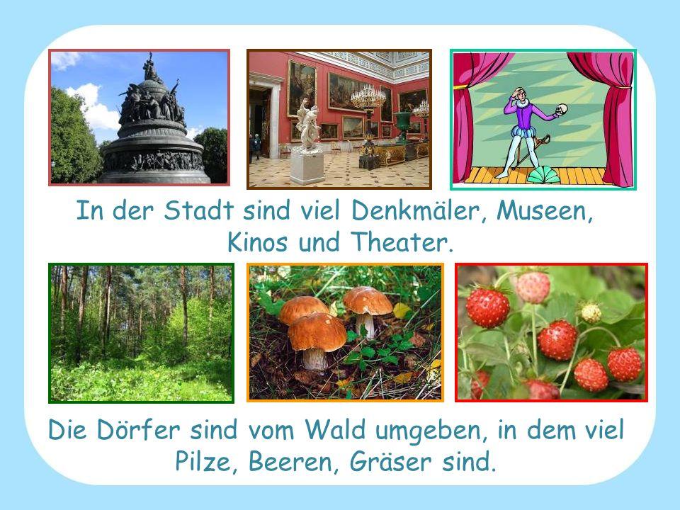 In der Stadt sind viel Denkmäler, Museen, Kinos und Theater.