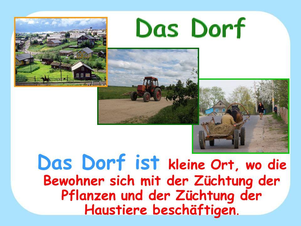 Das Dorf Das Dorf ist kleine Ort, wo die Bewohner sich mit der Züchtung der Pflanzen und der Züchtung der Haustiere beschäftigen.