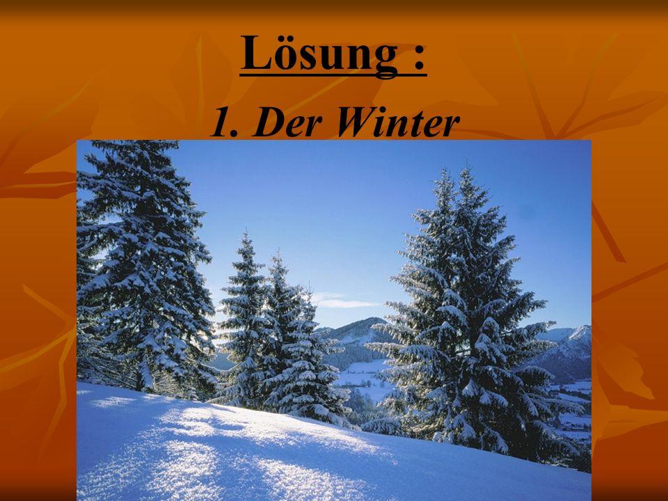 Lösung : Der Winter