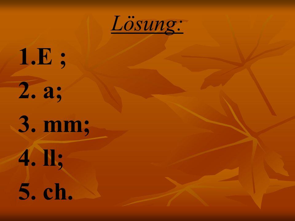 Lösung: 1.E ; 2. a; 3. mm; 4. ll; 5. ch.
