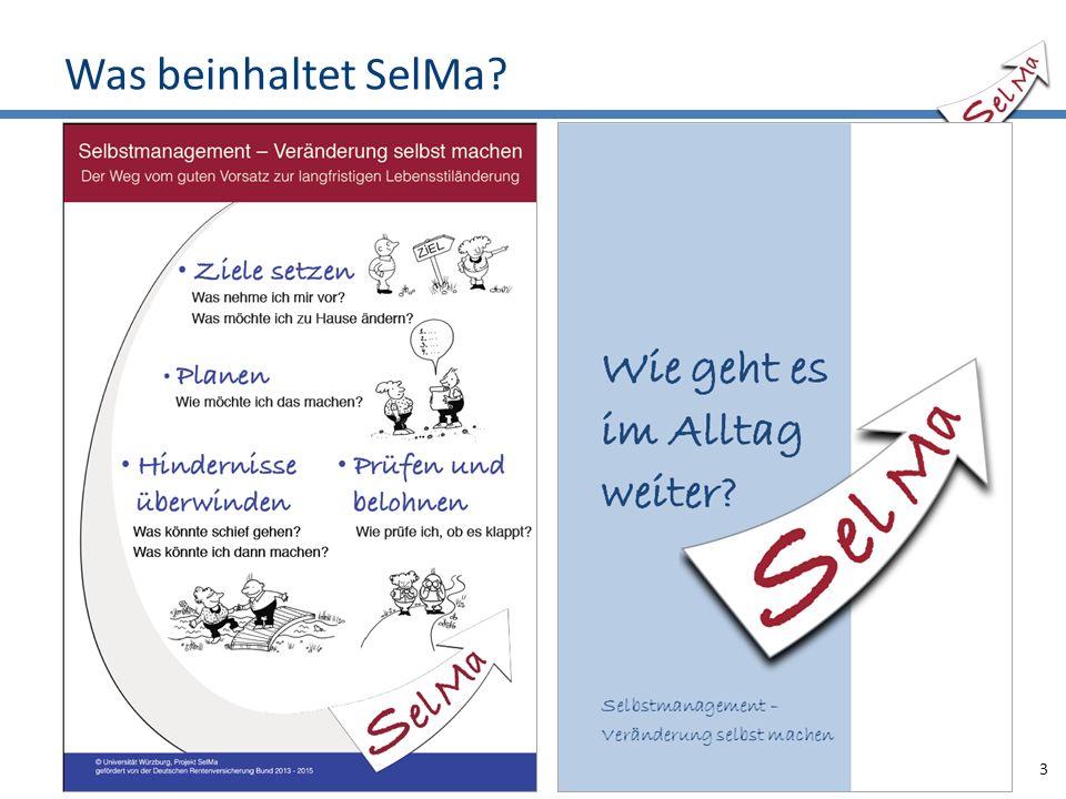 Was beinhaltet SelMa