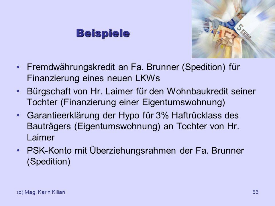 Beispiele Fremdwährungskredit an Fa. Brunner (Spedition) für Finanzierung eines neuen LKWs.