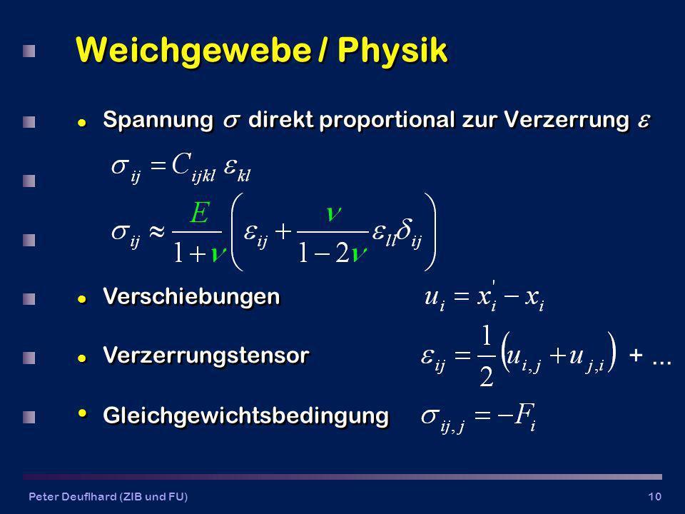 Weichgewebe / Physik Spannung  direkt proportional zur Verzerrung  Verschiebungen. Verzerrungstensor.
