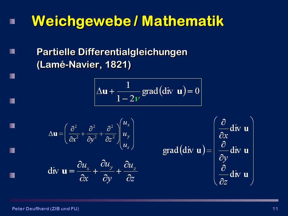 Weichgewebe / Mathematik