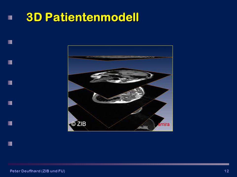 3D Patientenmodell