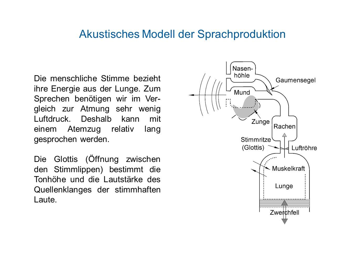 Akustisches Modell der Sprachproduktion