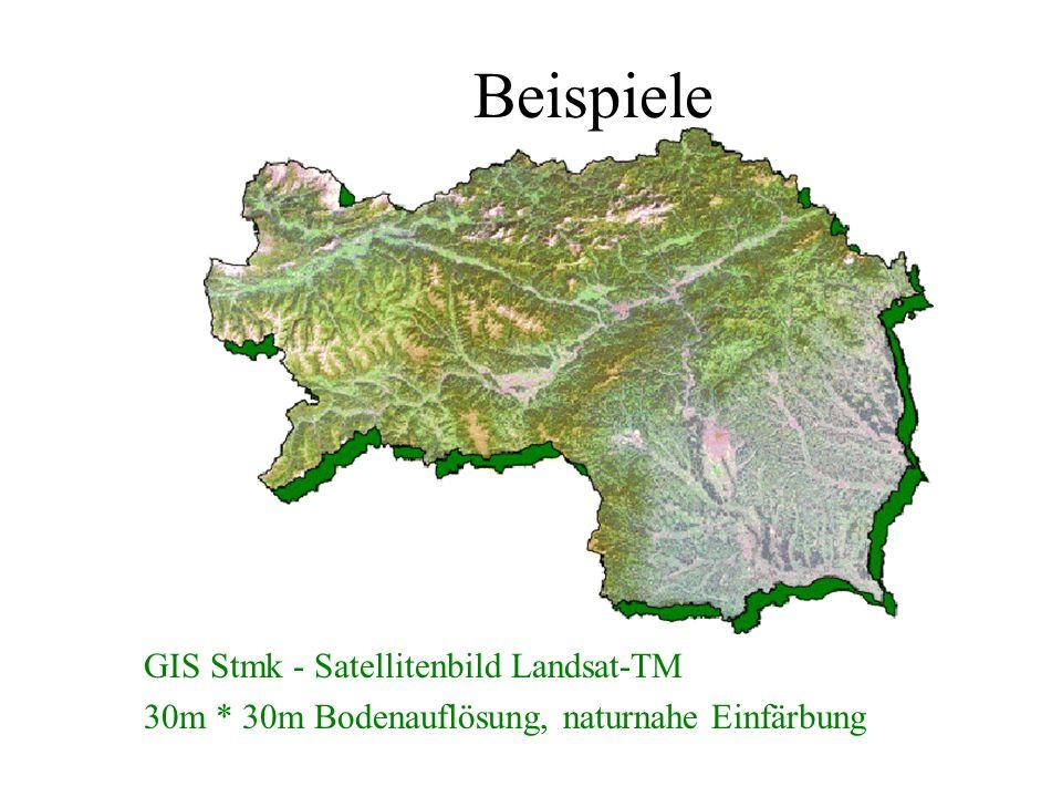 Beispiele GIS Stmk - Satellitenbild Landsat-TM