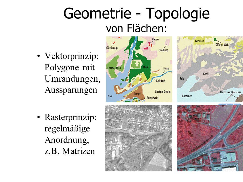 Geometrie - Topologie von Flächen:
