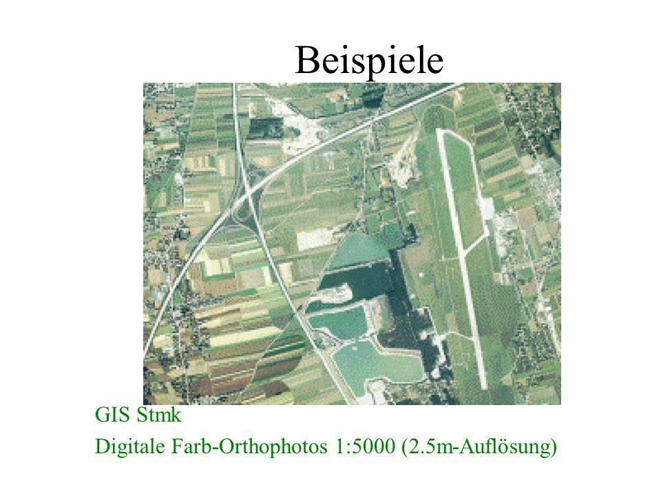Beispiele GIS Stmk Digitale Farb-Orthophotos 1:5000 (2.5m-Auflösung)