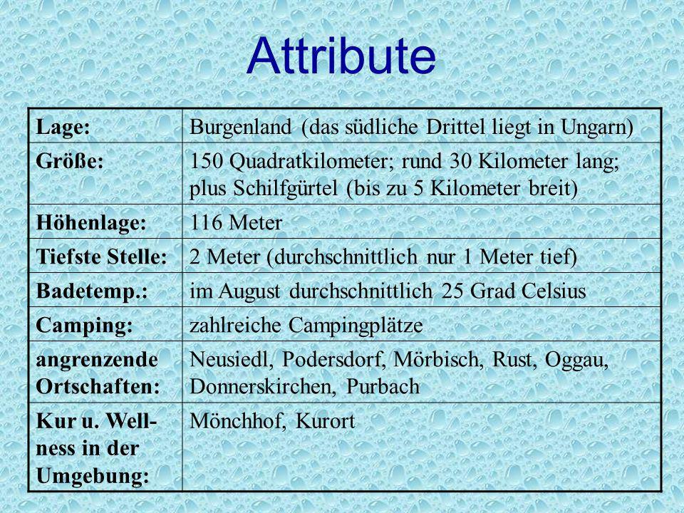Attribute Lage: Burgenland (das südliche Drittel liegt in Ungarn)