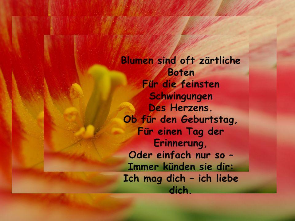 Blumen sind oft zärtliche Boten Für die feinsten Schwingungen