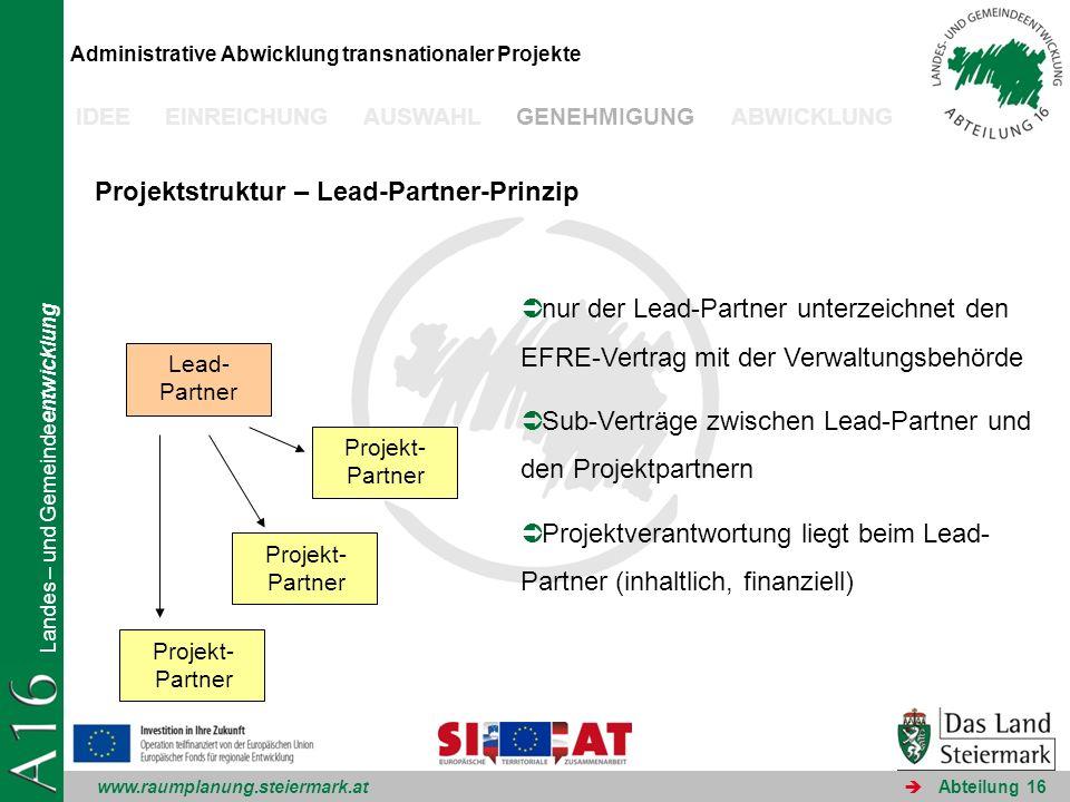Projektstruktur – Lead-Partner-Prinzip
