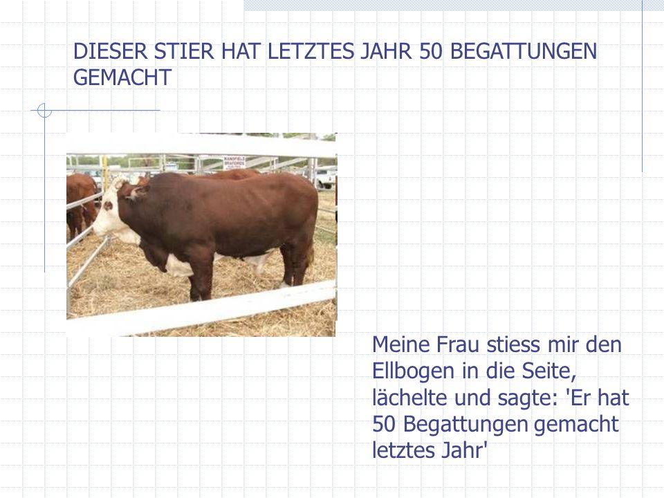 DIESER STIER HAT LETZTES JAHR 50 BEGATTUNGEN GEMACHT