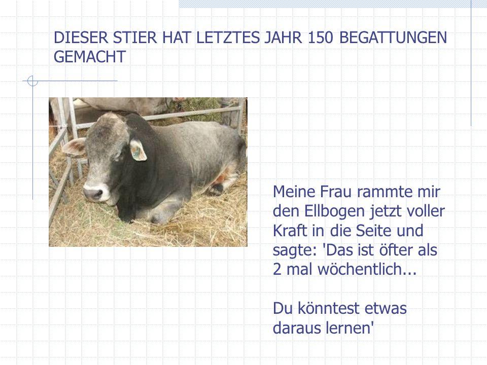 DIESER STIER HAT LETZTES JAHR 150 BEGATTUNGEN GEMACHT