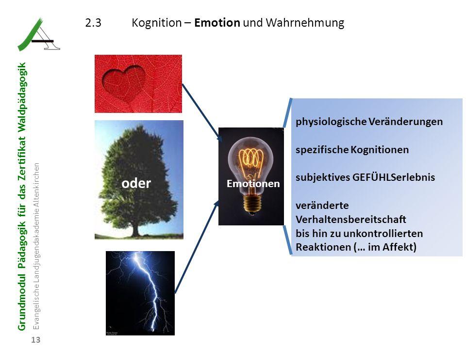 oder 2.3 Kognition – Emotion und Wahrnehmung